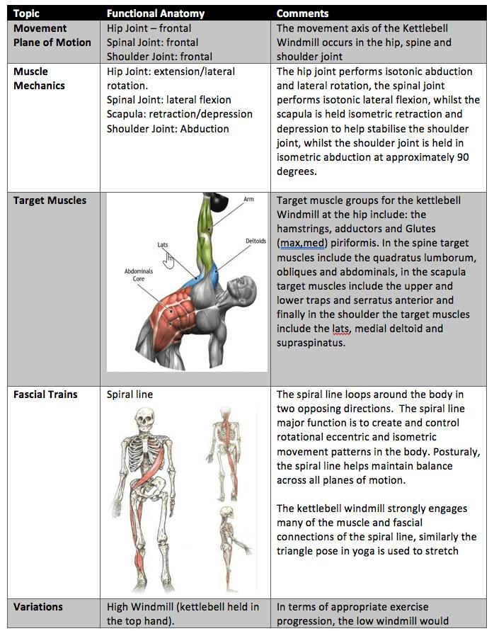 Functional Anatomy Of The Kettlebell Windmill - Wednesday Wisdom ...